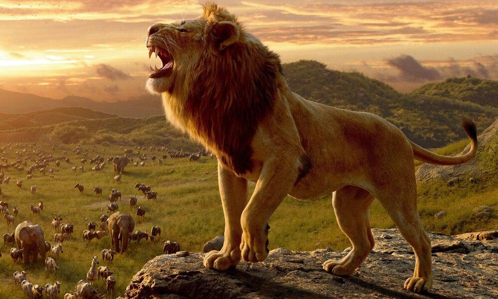 思い出の旅路 ライオンキング