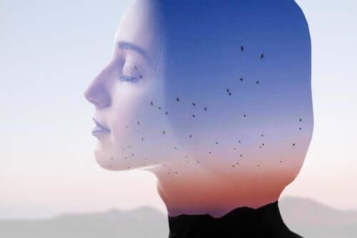 意識的な呼吸が脳にもたらす効果