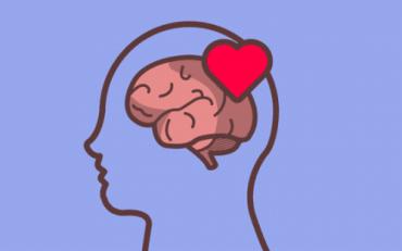 『Pon Corazon a Tu Cerebro』-感情を理解するための本