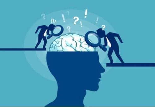 ニューロンの同期:脳活動を奏でるオーケストラ