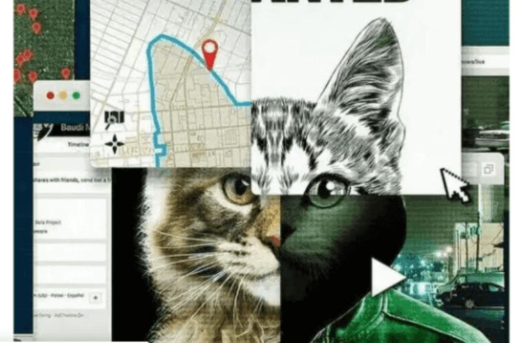 『猫いじめに断固NO!』ネット上の虐待犯を追う
