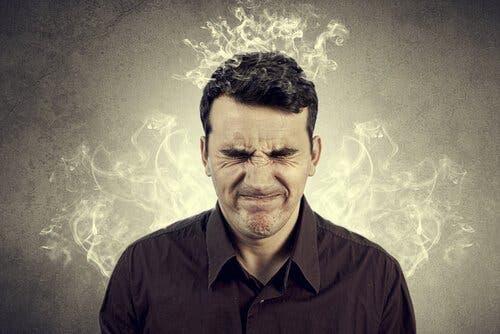 不信 神経科学 影響