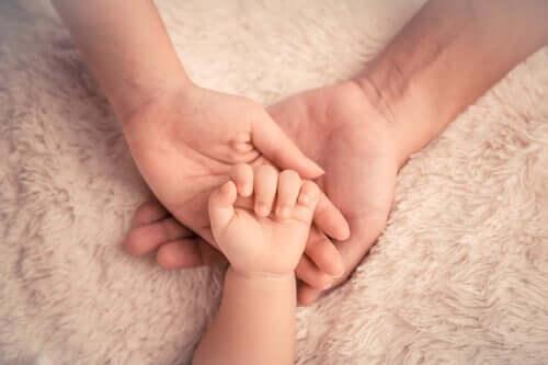 マラスムス 幼年期 愛情 重要性
