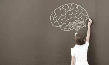 心理学者がWISC知能検査を使う理由