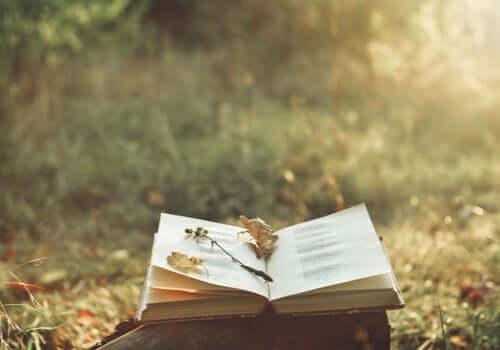 詩がもたらす魔法と、痛みを和らげるパワー
