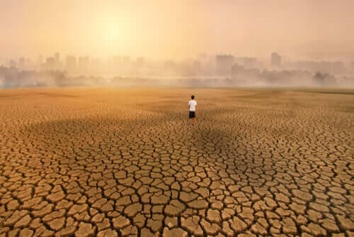エコ不安症:気候変動がもたらす影響について
