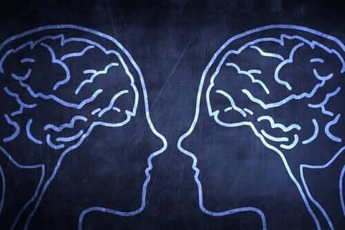 人類の進化上の強み「社会脳」