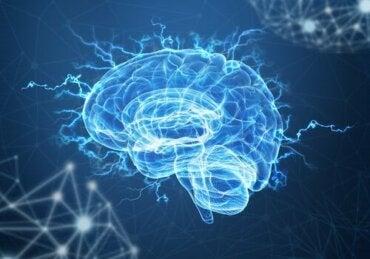 神経可塑性と心的外傷後ストレス:脳はトラウマを乗り越えられるか?