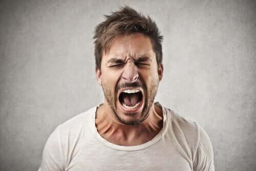 意思表示のために怒鳴り声を上げる人々