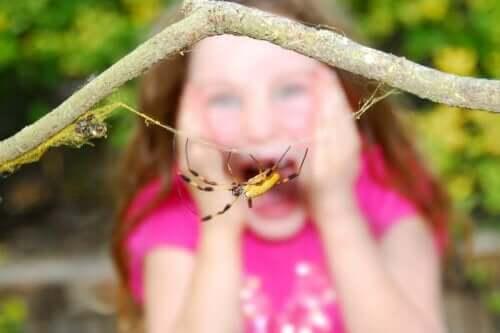 アラクノフォビア、クモ類への恐怖心