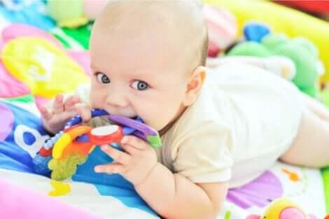 胎児および新生児における感覚の発達について